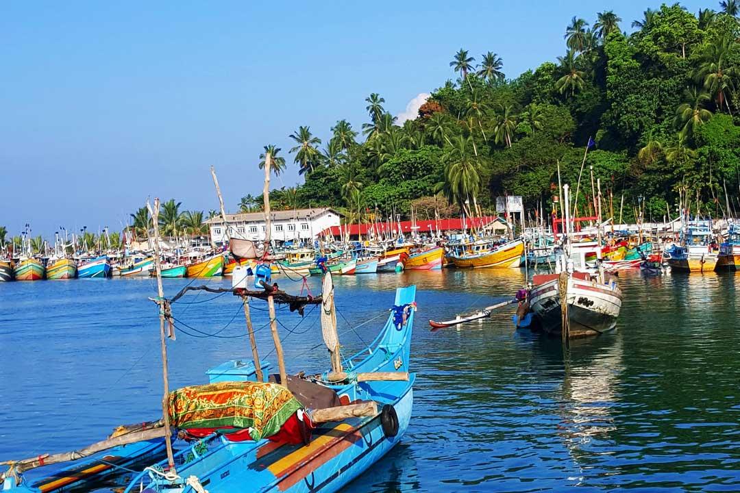 mirissa fishing harbor