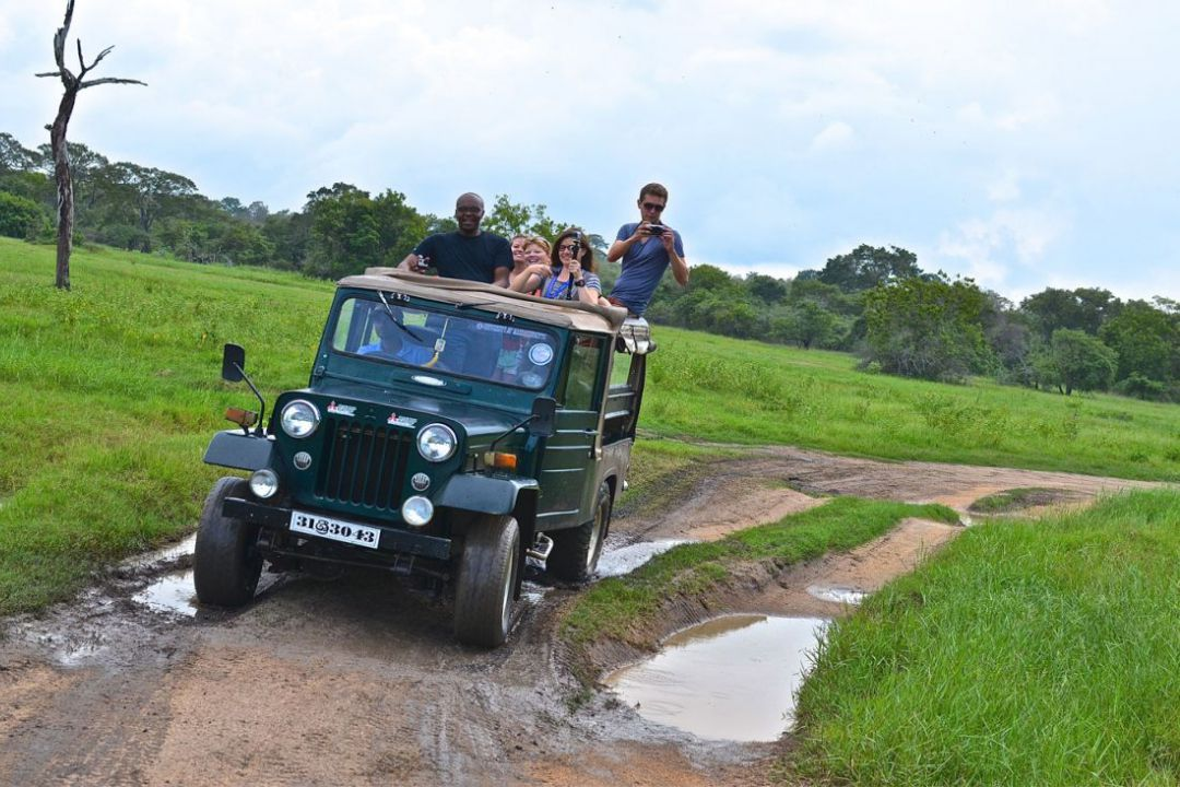 minneriya-safari-jeep